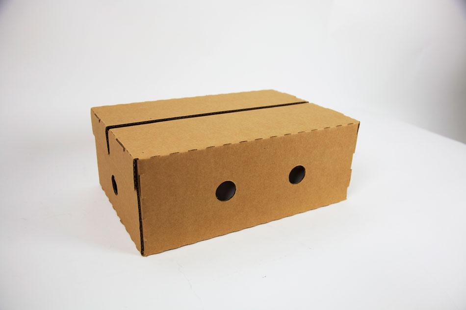 Beverage packaging standard shipping case