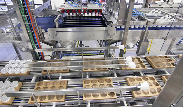 Flexible case packer ideal for packing cut out trays