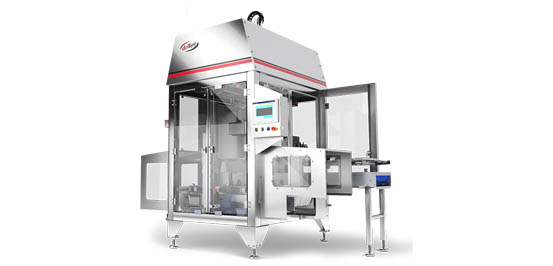 Rigid case packer flexloader series for high-speed case packing