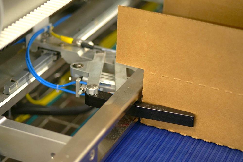 Robotic case packer case holder