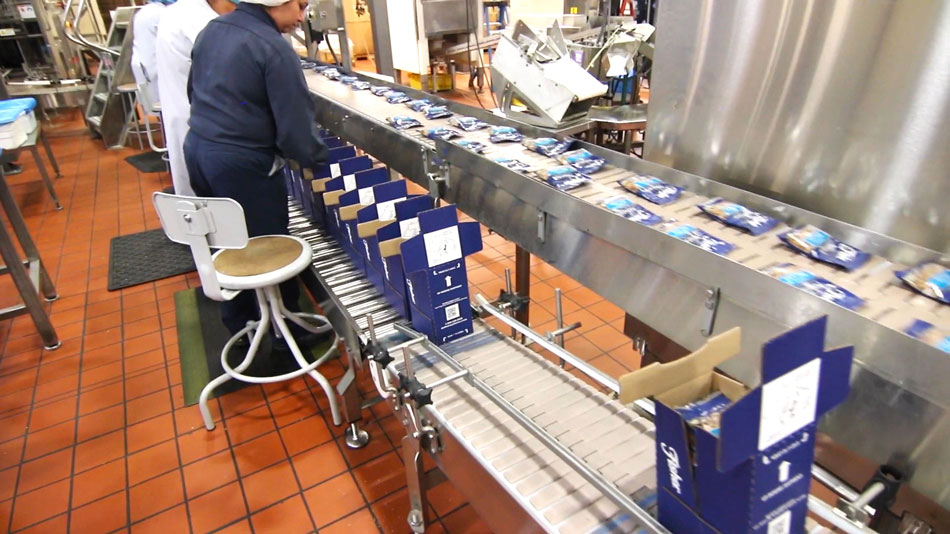 Semi automatic packaging line fisher nuts operation