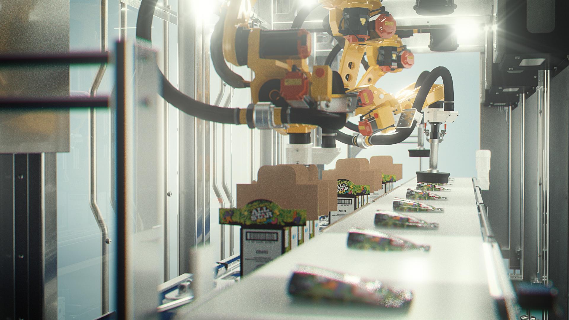 Robotic Top Loader LSP Case Packer 103